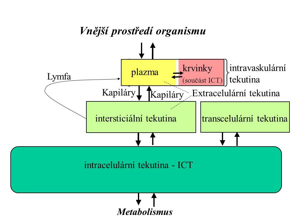 Vnější prostředí organismu