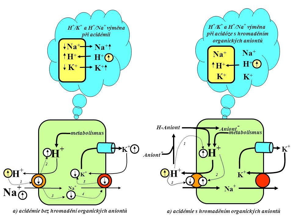 při acidóze s hromaděním a) acidémie s hromaděním organických aniontů