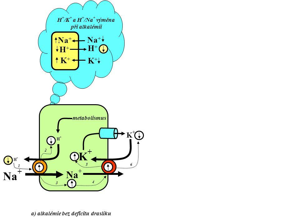 a) alkalémie bez deficitu draslíku