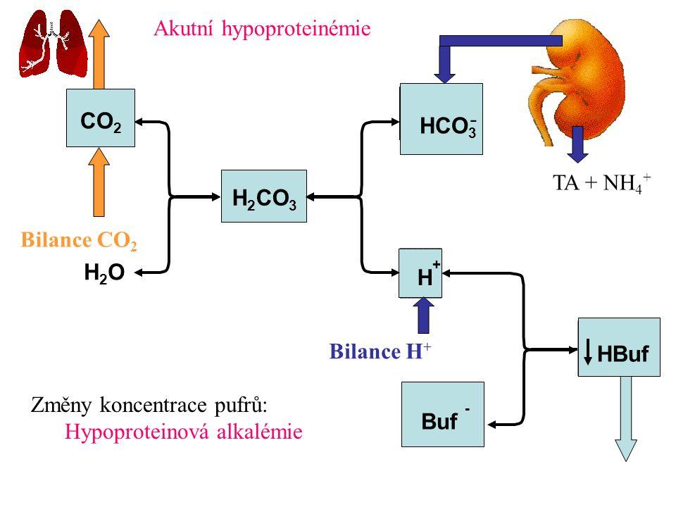 Akutní hypoproteinémie