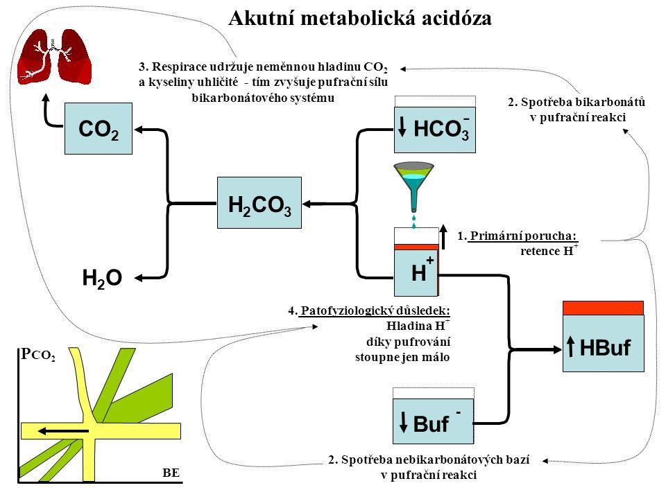 Akutní metabolická acidóza 2. Spotřeba nebikarbonátových bazí