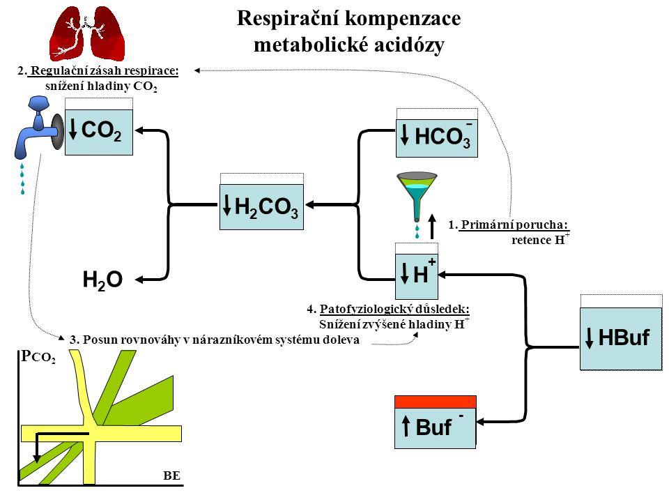 Respirační kompenzace metabolické acidózy