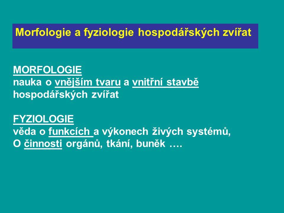 Morfologie a fyziologie hospodářských zvířat