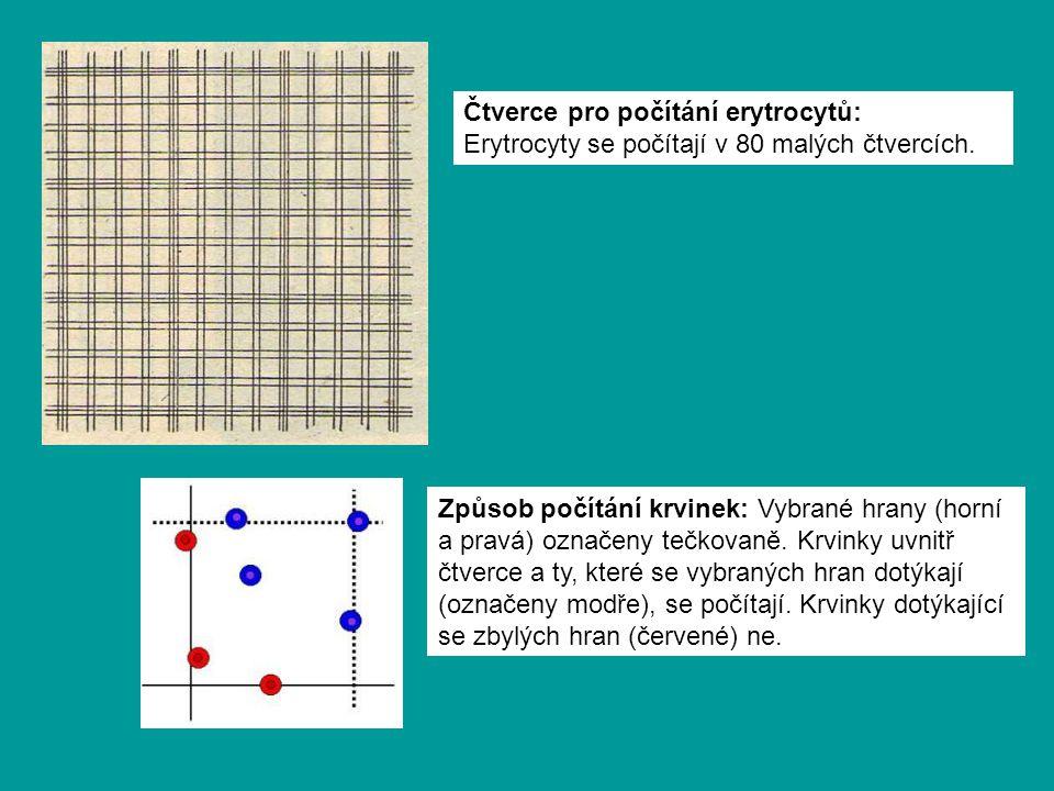 Čtverce pro počítání erytrocytů: