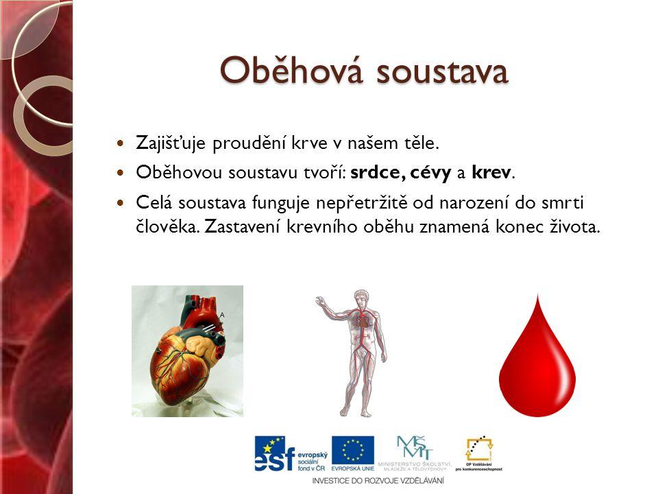Oběhová soustava Zajišťuje proudění krve v našem těle.