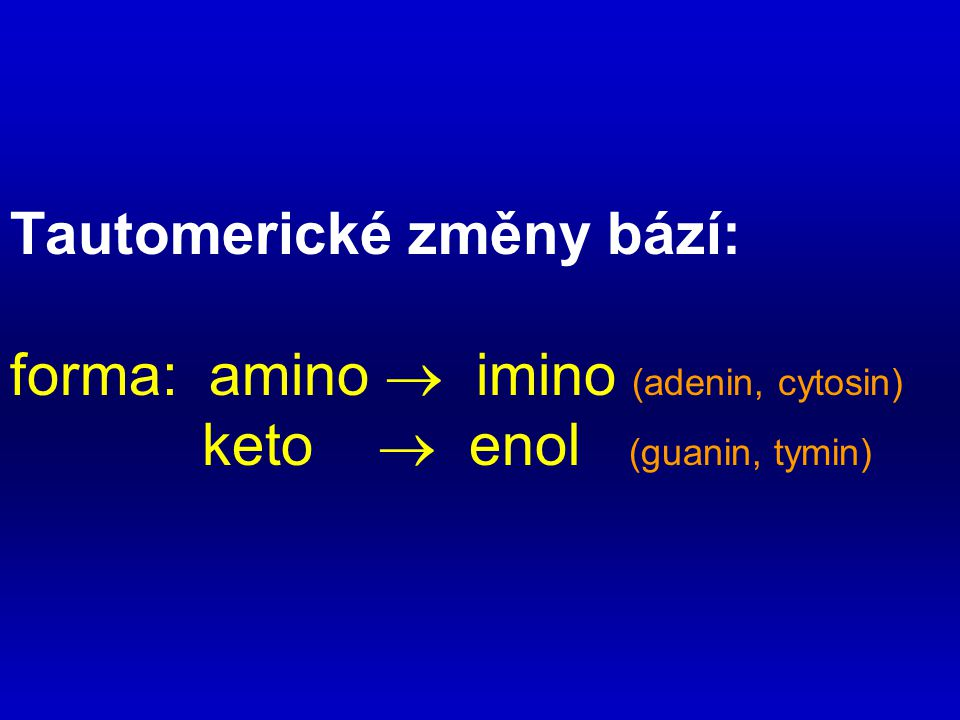 Tautomerické změny bází: forma: amino  imino (adenin, cytosin)