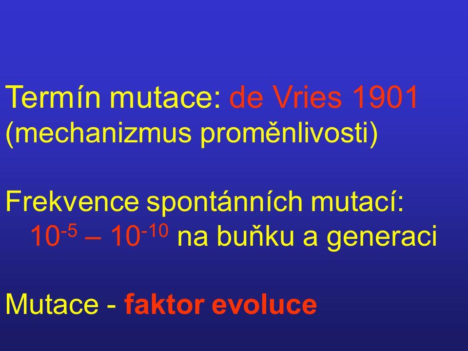 Termín mutace: de Vries 1901