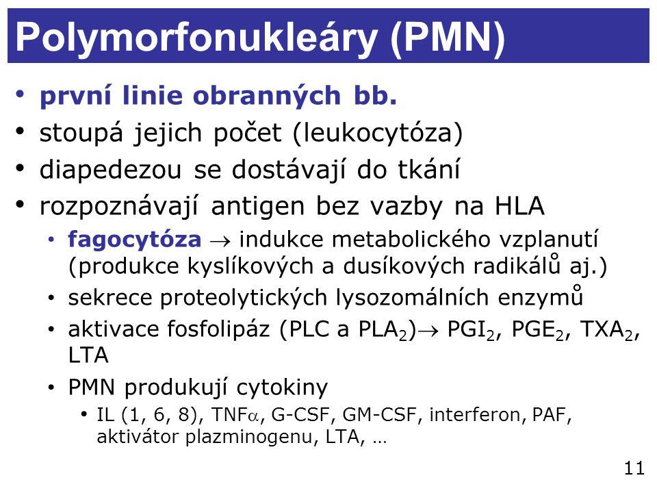 Polymorfonukleáry (PMN)