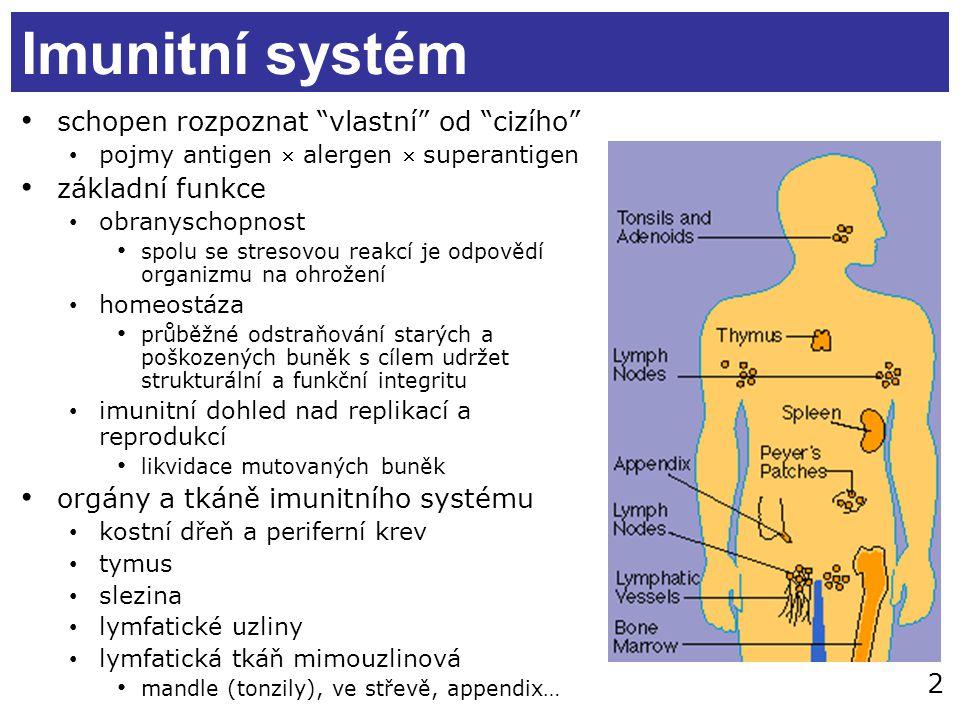 Imunitní systém schopen rozpoznat vlastní od cizího