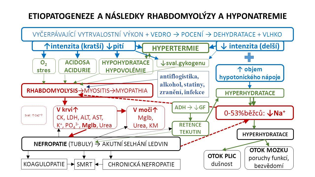 ETIOPATOGENEZE A NÁSLEDKY RHABDOMYOLÝZY A HYPONATREMIE