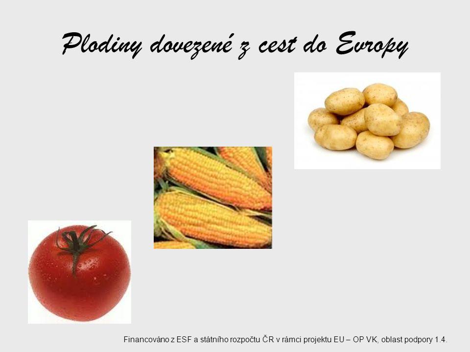 Plodiny dovezené z cest do Evropy
