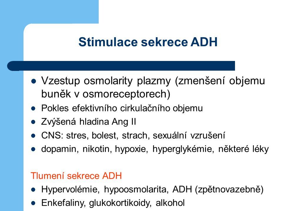 Stimulace sekrece ADH Vzestup osmolarity plazmy (zmenšení objemu buněk v osmoreceptorech) Pokles efektivního cirkulačního objemu.