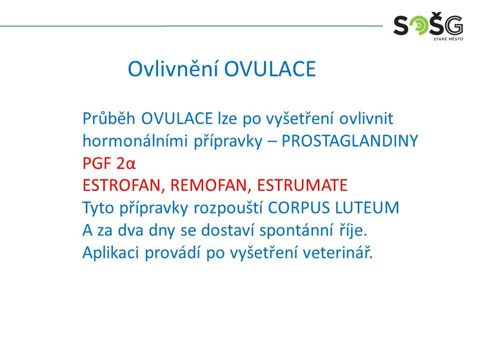 Ovlivnění OVULACE Průběh OVULACE lze po vyšetření ovlivnit