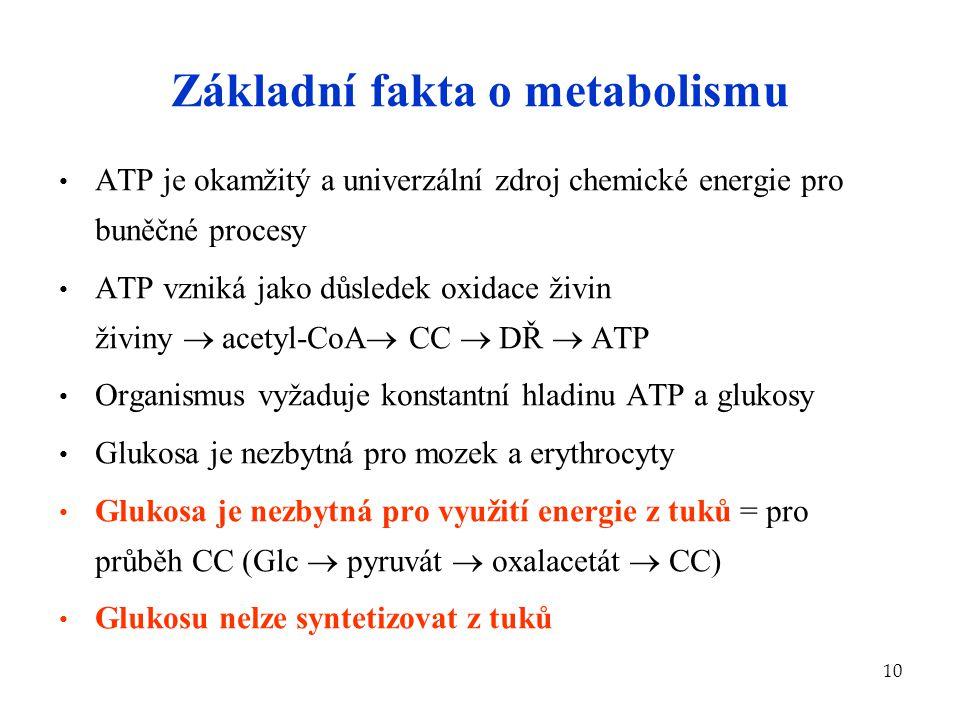 Základní fakta o metabolismu