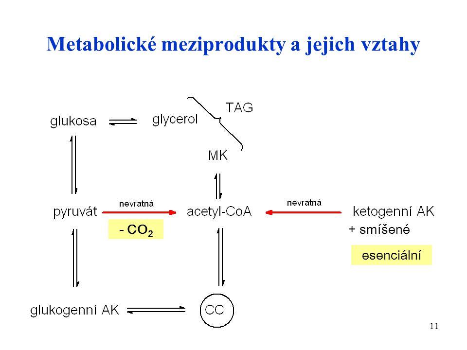 Metabolické meziprodukty a jejich vztahy