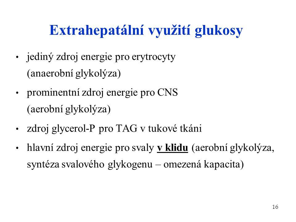Extrahepatální využití glukosy