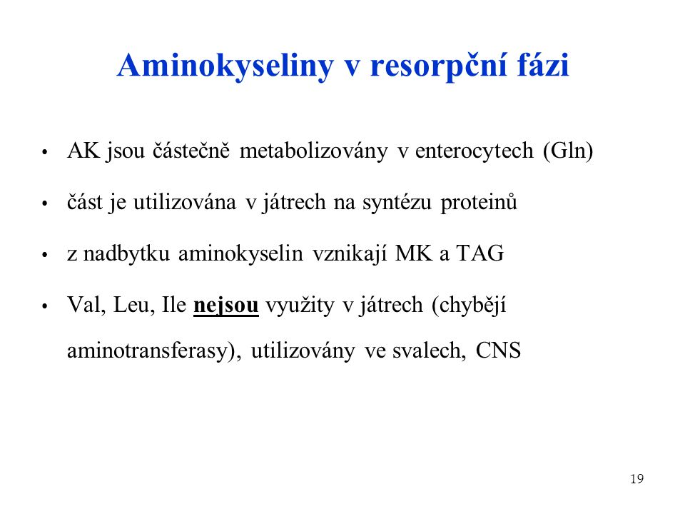 Aminokyseliny v resorpční fázi