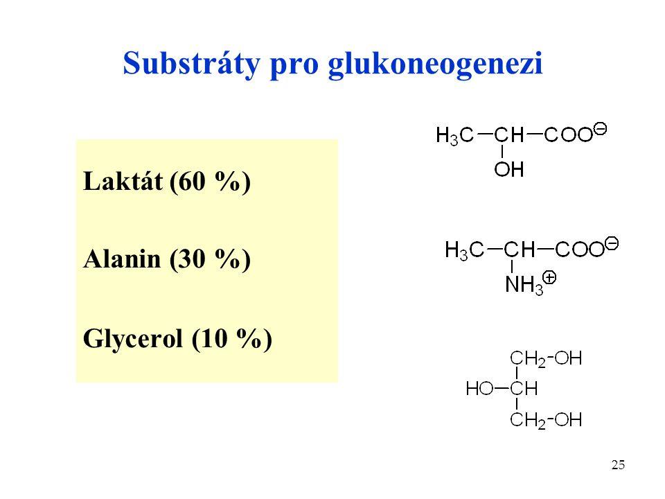 Substráty pro glukoneogenezi