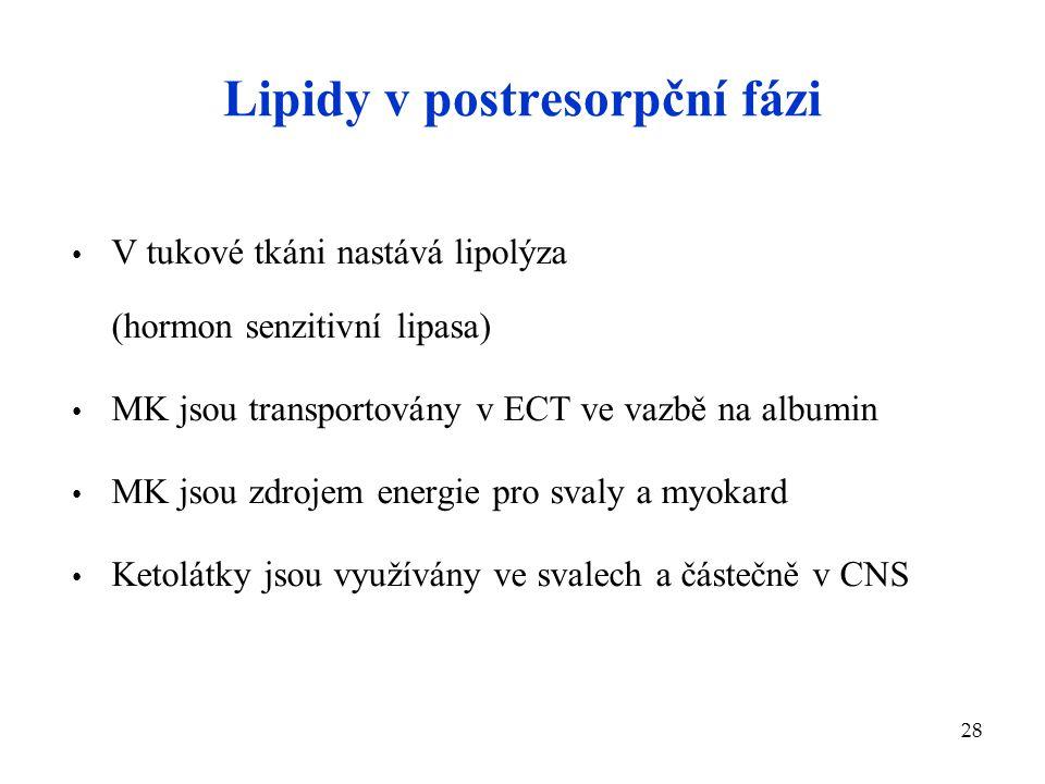 Lipidy v postresorpční fázi