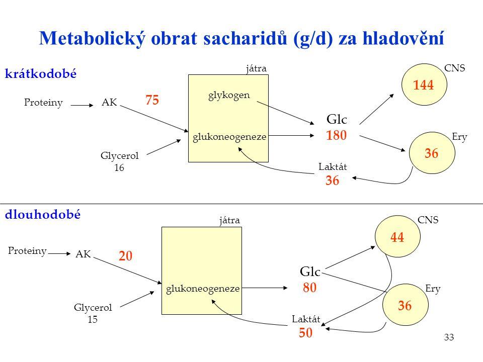Metabolický obrat sacharidů (g/d) za hladovění