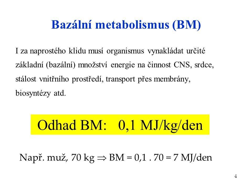Bazální metabolismus (BM)
