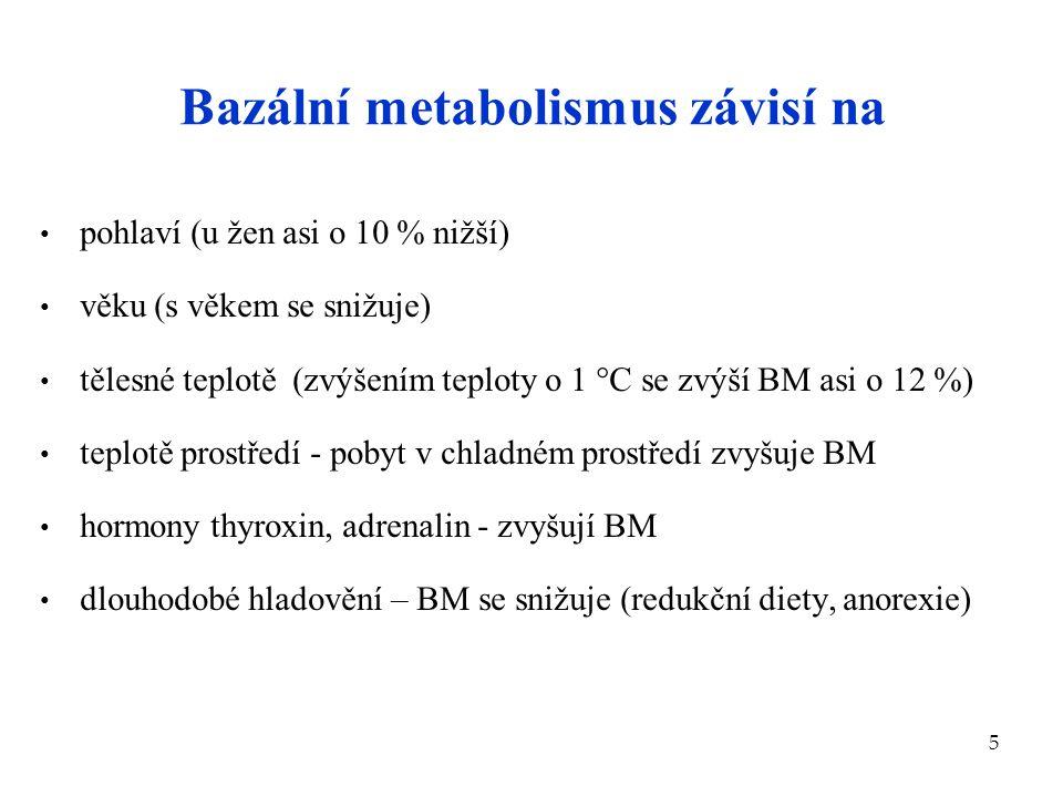 Bazální metabolismus závisí na