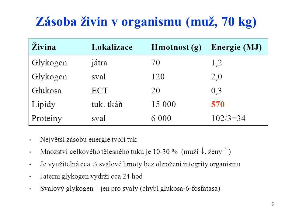 Zásoba živin v organismu (muž, 70 kg)