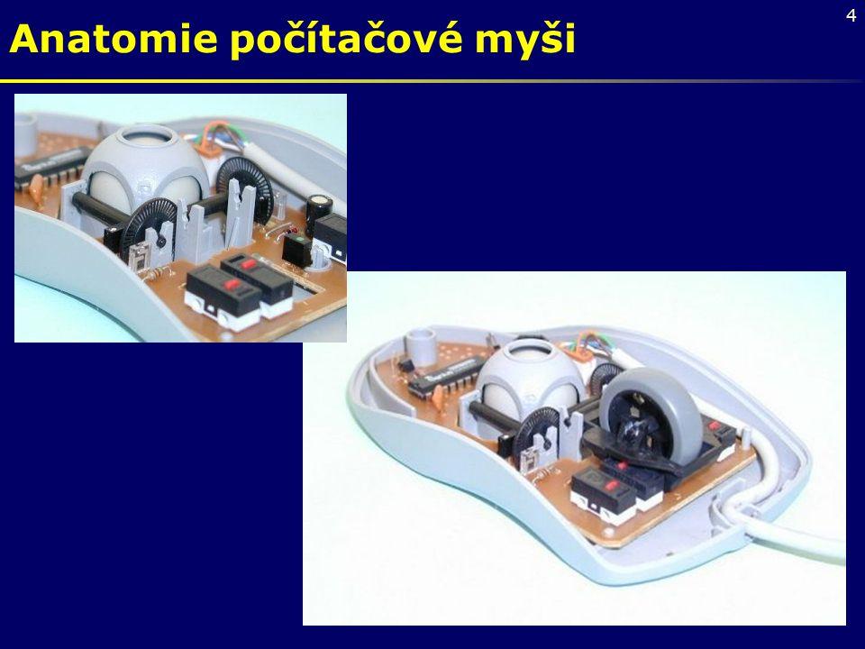 Anatomie počítačové myši