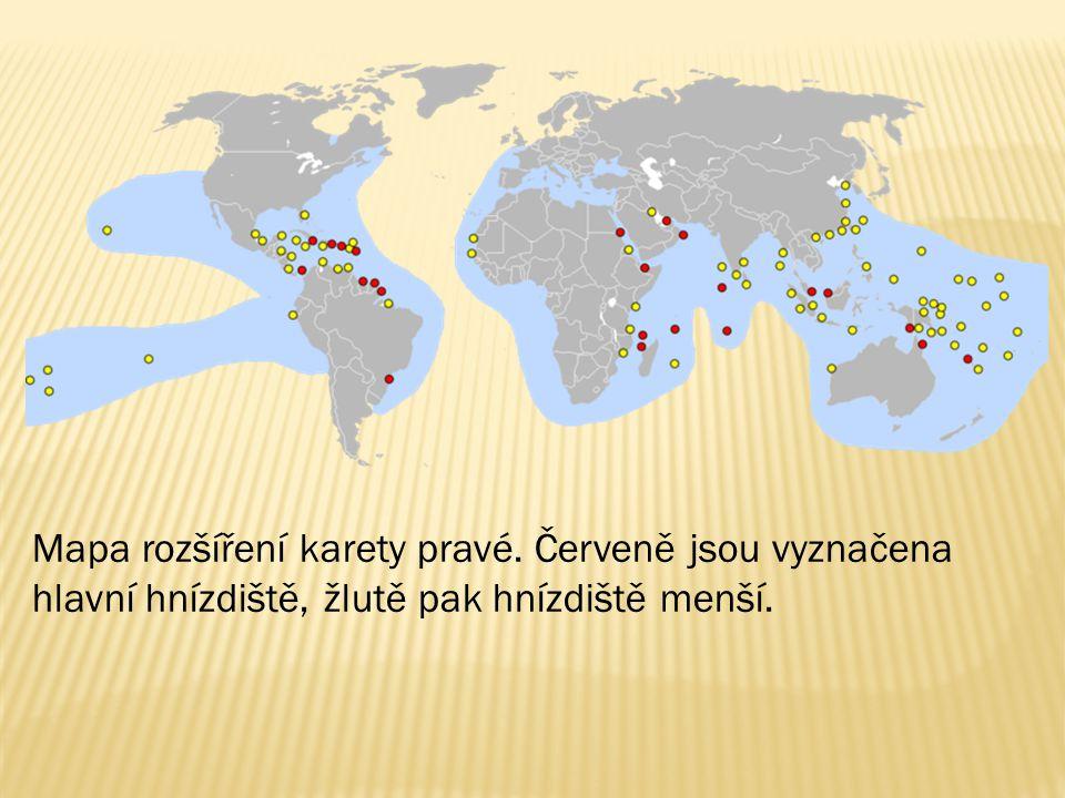 Mapa rozšíření karety pravé