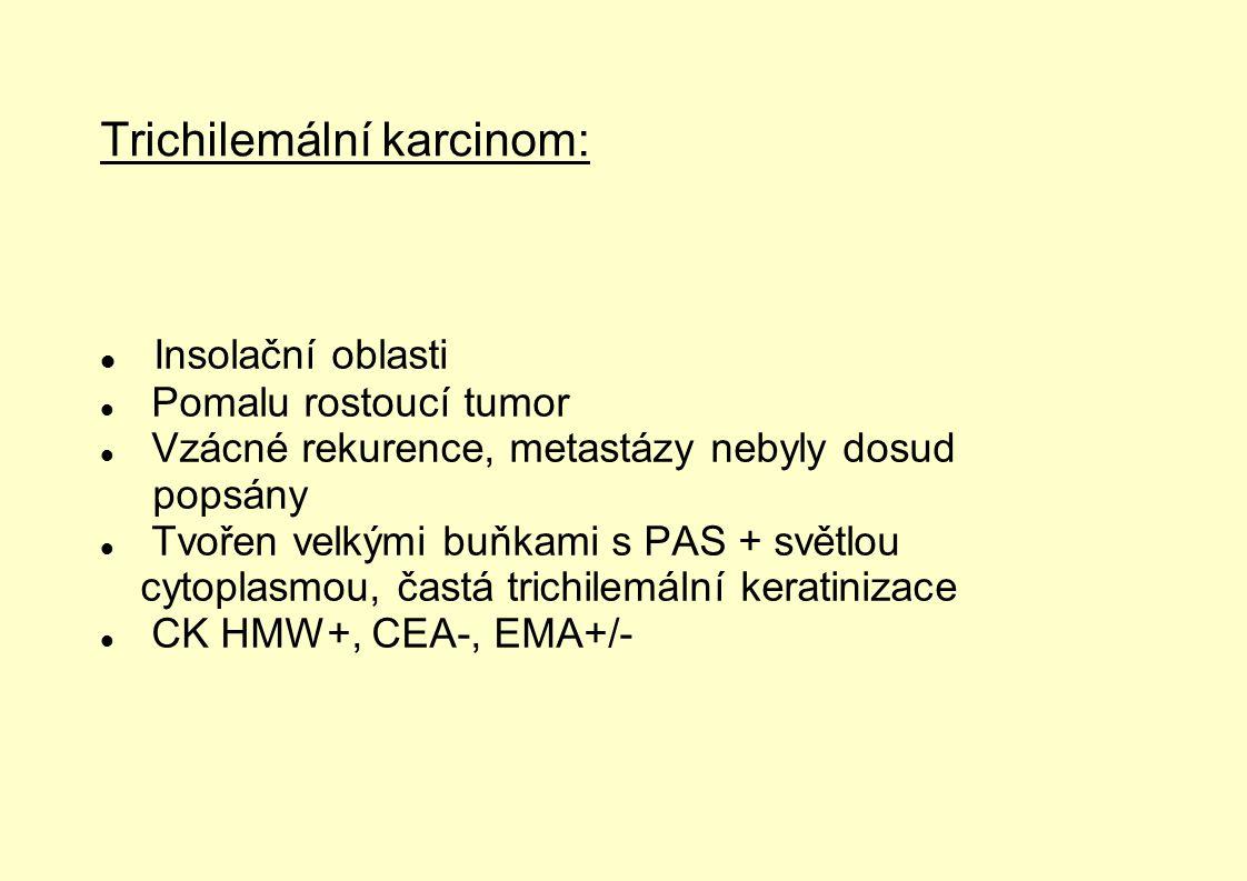 Trichilemální karcinom: