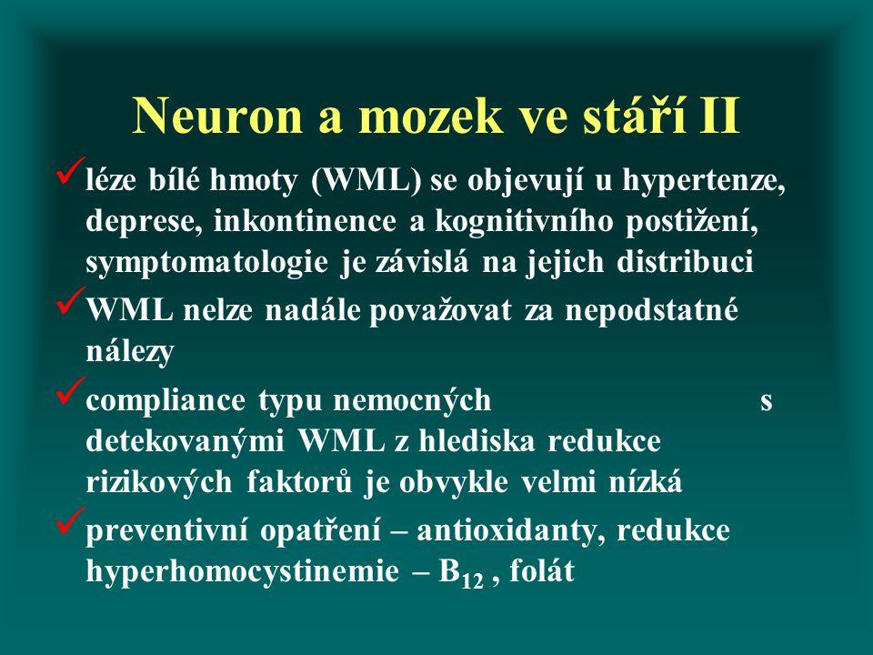 Neuron a mozek ve stáří II