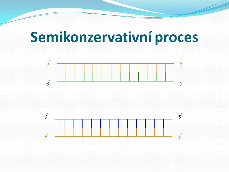 Semikonzervativní proces