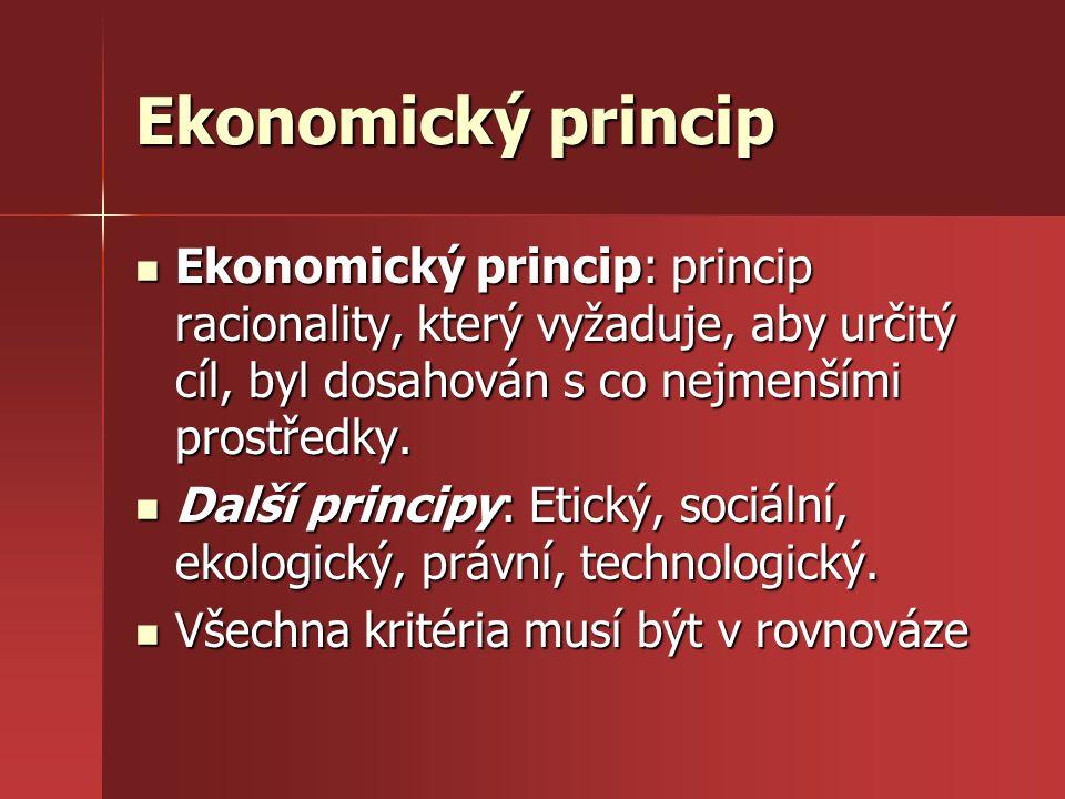 Ekonomický princip Ekonomický princip: princip racionality, který vyžaduje, aby určitý cíl, byl dosahován s co nejmenšími prostředky.