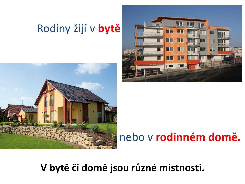 Rodiny žijí v bytě nebo v rodinném domě.