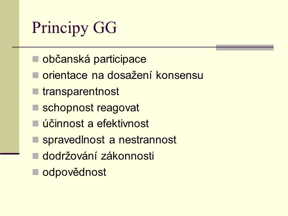 Principy GG občanská participace orientace na dosažení konsensu