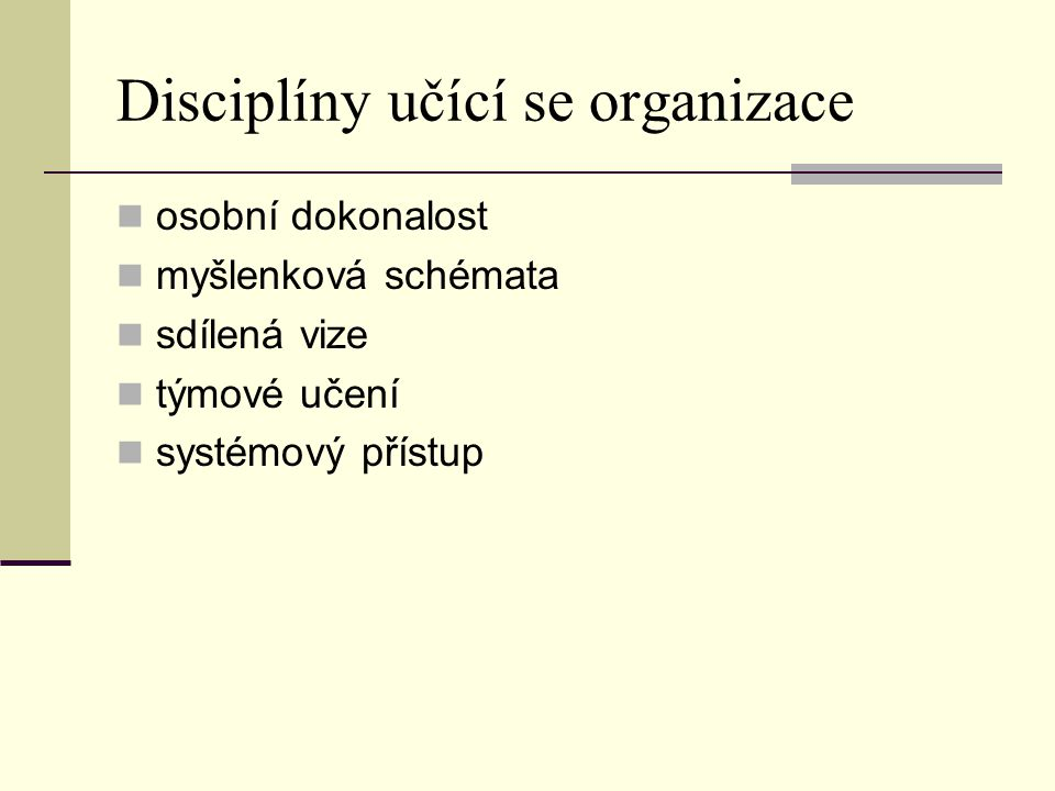 Disciplíny učící se organizace