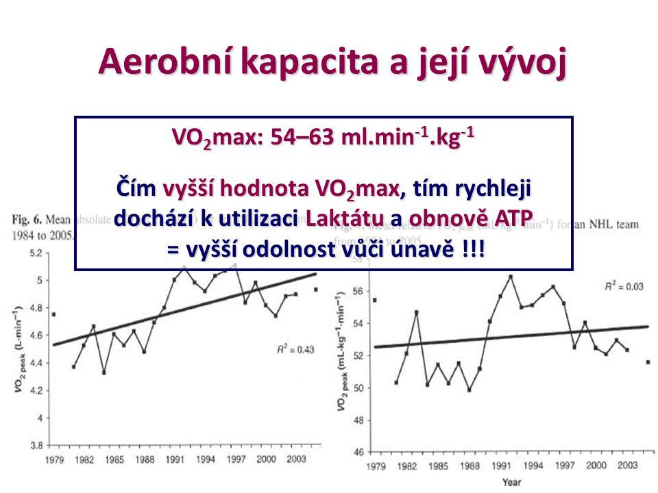 Aerobní kapacita a její vývoj = vyšší odolnost vůči únavě !!!
