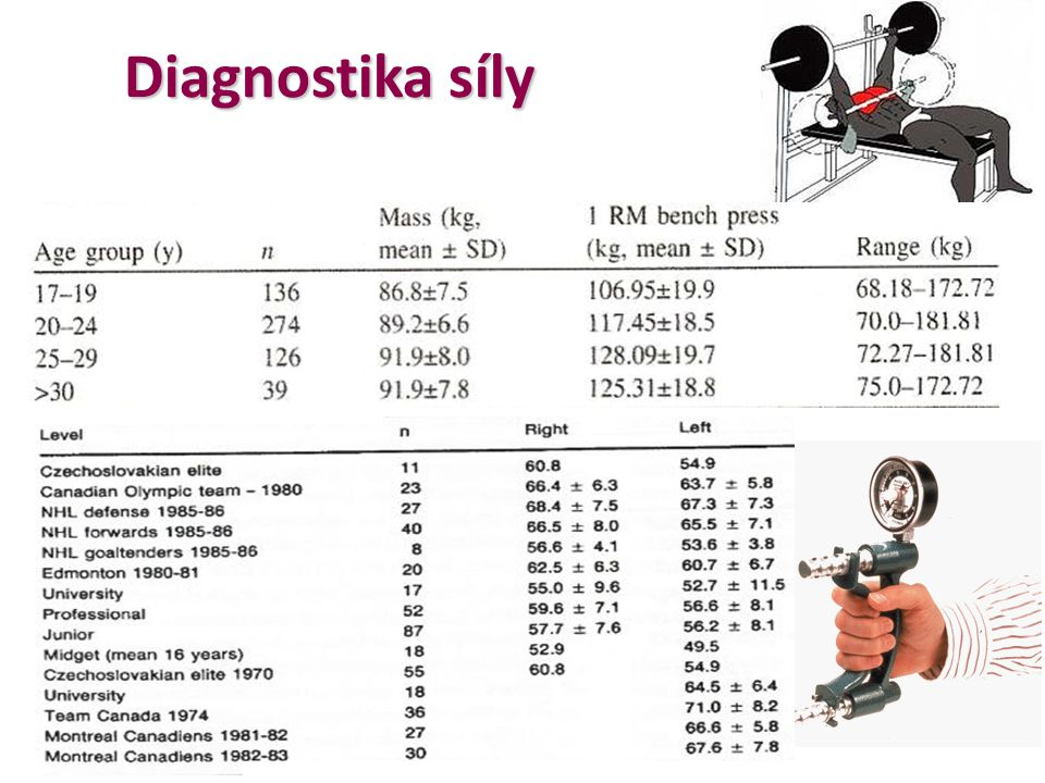 Diagnostika síly
