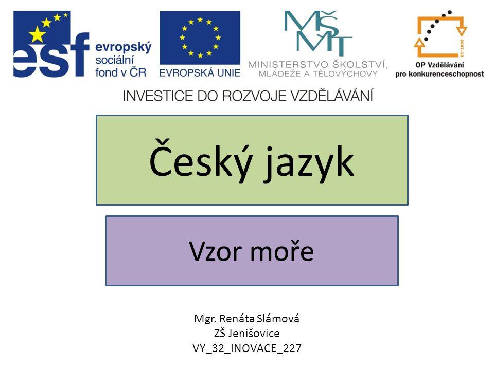 Český jazyk Vzor moře Mgr. Renáta Slámová ZŠ Jenišovice