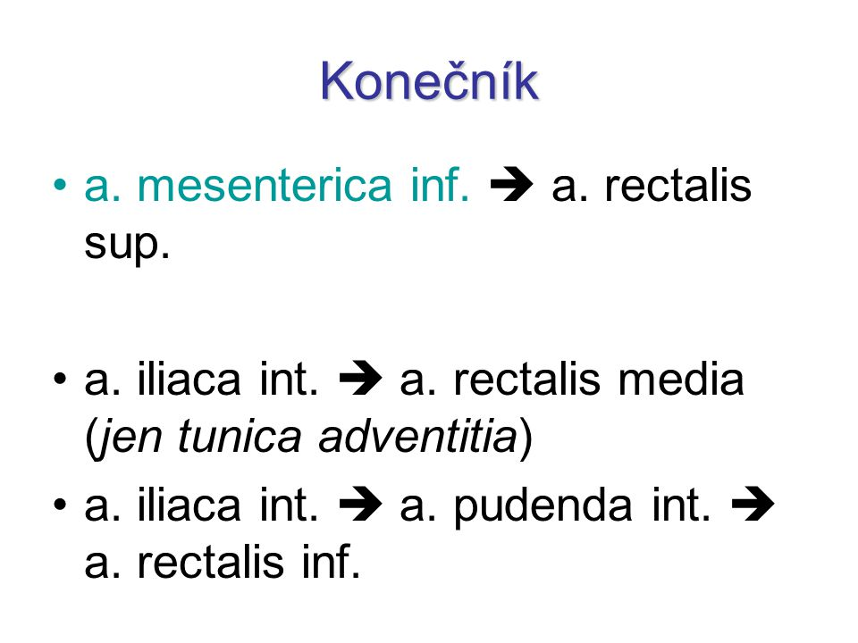 Konečník a. mesenterica inf.  a. rectalis sup.