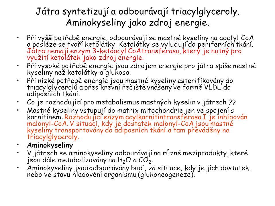 Játra syntetizují a odbourávají triacylglyceroly