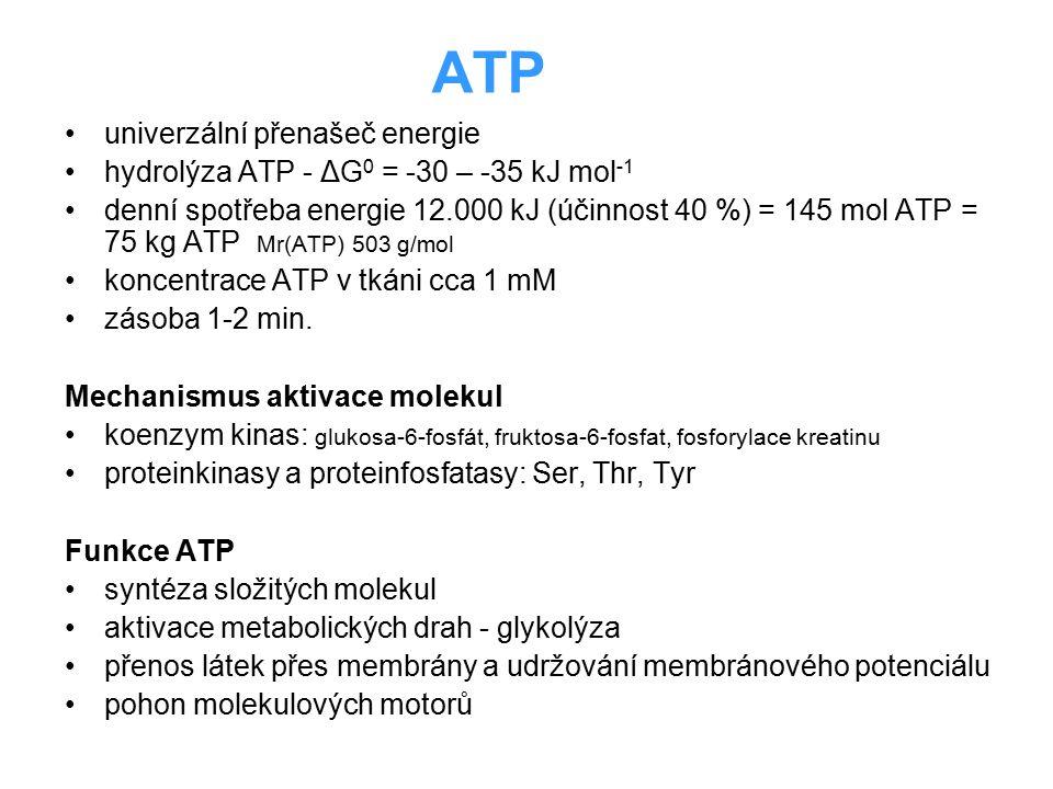 ATP univerzální přenašeč energie