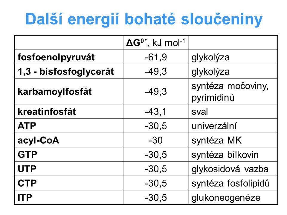Další energií bohaté sloučeniny