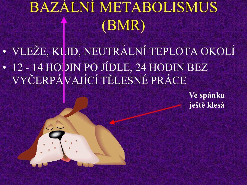 BAZÁLNÍ METABOLISMUS (BMR)