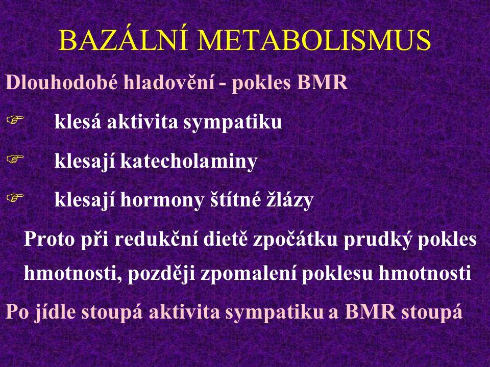 BAZÁLNÍ METABOLISMUS Dlouhodobé hladovění - pokles BMR