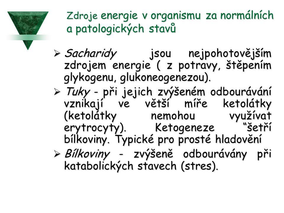 Zdroje energie v organismu za normálních a patologických stavů