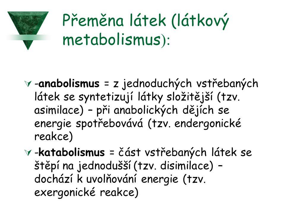 Přeměna látek (látkový metabolismus):