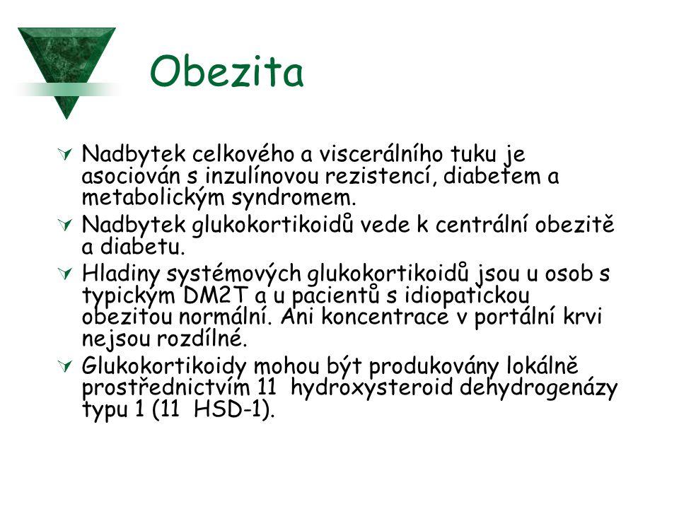Obezita Nadbytek celkového a viscerálního tuku je asociován s inzulínovou rezistencí, diabetem a metabolickým syndromem.