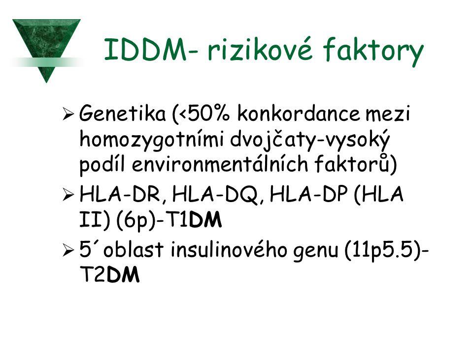 IDDM- rizikové faktory