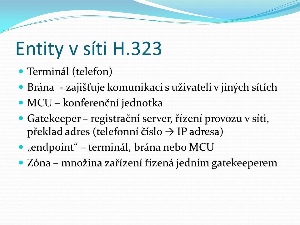 Entity v síti H.323 Terminál (telefon)